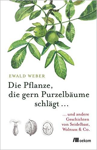 Die Pflanze, die gern Purzelbäume schlägt ...: ...und andere Geschichten von Seidelbast, Walnuss & Co.
