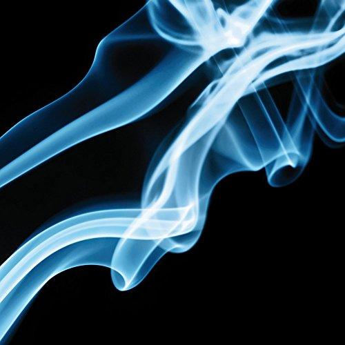 Apple iPhone 4 Housse Étui Silicone Coque Protection Fumée Fumée Brume Sac Downflip noir