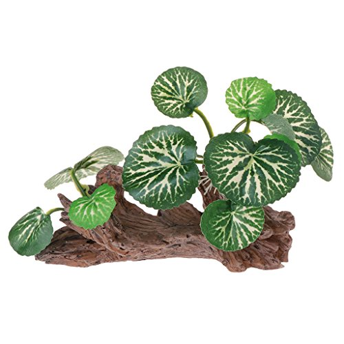 Ruda Aquariumdeko grüne Blätter aus totem Holz für Aquarien