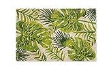 Excelsa Foliage Felpudo Entrada, Fibra de Coco, Verde, 40x 60cm