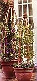 1Obelisk Säule aus Holz für arrampicatura Pflanzen 1,3Meter Garten Blumentöpfe Blumen
