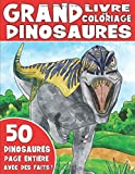 LE GRAND LIVRE DE COLORIAGE SUR LES DINOSAURES: Livre de Coloriage de Dinosaures Pour Enfants Avec des Faits