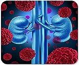 Rutschfestes Mousepad Mauspad Computer-Büro-Nierenkrebs Medizinisch Als Krebs-Zellen Im Menschlichen Körper Hauptschulspiel-Spieler-Computerarbeiter,25X30 cm