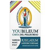 Carnet del Peregrino Youbileum.Tarjeta de servicios prepago Jubileo de la Misericordia