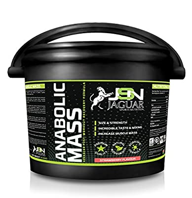 Jsn Anabolic Mass (4.5kg) *weight Gainer* *whey Protein* *high Calorie* from Suppleform