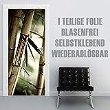 XXL-Tapeten Türtapete selbstklebend TürPoster Asian Bamboo im Format 90x210cm - Türfolie Klebefolie von Trendwände