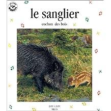 Le Sanglier, cochon des bois
