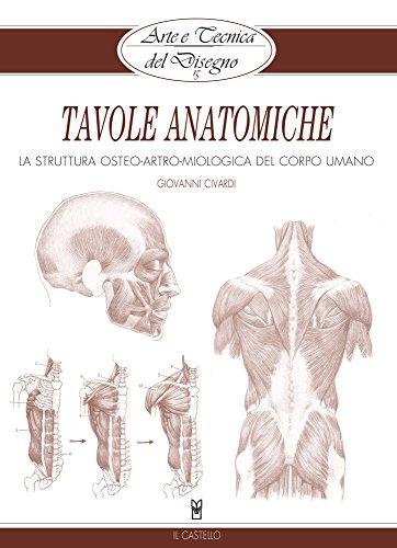 arte-e-tecnica-del-disegno-15-tavole-anatomiche-la-struttura-osteo-artro-miologica-del-corpo-umano-c