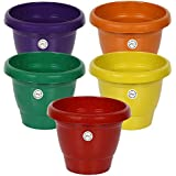 Gate Garden Flowering Pot (8inch, 5 Colour) - Set of 5 Pots