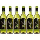 Tall Horse Chenin Blanc 2015 Wine 75 cl (Case of 6)