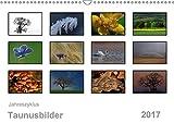 Jahreszyklus Taunusbilder (Wandkalender 2017 DIN A3 quer): Stimmungsvolle Bilder aus Untertaunus und Hochtaunus im Verlauf eines Jahres (Monatskalender, 14 Seiten ) (CALVENDO Natur)