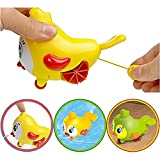 Smartcraft Lovely bird groud toys,Amphibious Clockwork Dabbling Toy Baby bath water toy for kids,wind up bathtub toys,easy&funny bath time (Pack of 1)