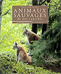 Animaux sauvages de nos contrées : Les mamifères dans leur milieu