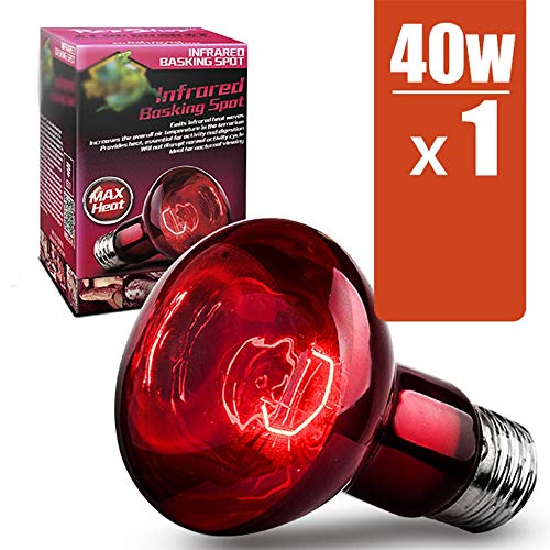 LIBWX Lámpara de calefacción por Infrarrojos para Mascotas Que se arrastra del Reptil, luz Nocturna UVA, Vidrio Esmerilado y Tornillo estándar E27,40W