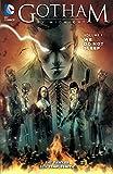 Image de Gotham By Midnight Vol. 1: We Do Not Sleep