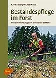 Bestandespflege im Forst: Von der Pflanzung zum erntereifen Bestand