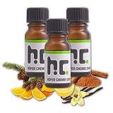 Höfer Chemie Duftöl Set 10 - mit 6 Düften - Orange, Zitrone, Zimt, Kiefer, Vanille, Konifere