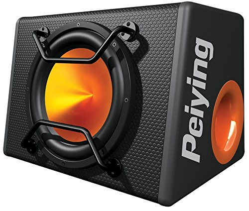 12-zoll-subwoofer-boxen (Peiying PY-BB300X 12