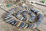 25 Strand Steine zum Basteln von dem Irischen Meer