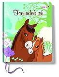 1 Freundebuch DEUTSCH Pferde 15x18cm