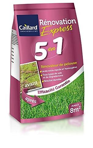 Caillard PFSA19926 Graines de Gazon Renovation Express 5 en 1/1,2 kg 8 m²