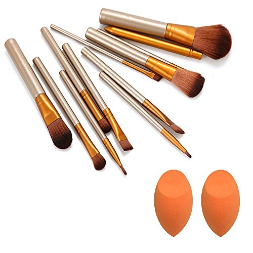 Zafosx Very Soft and Silky Professional Brushes Kit for Salon and Home Users with Storage Box - Set of 12 Pieces