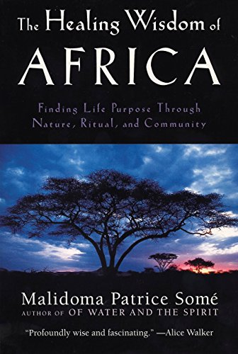 The Healing Wisdom of Africa por Malidoma Patrice Some
