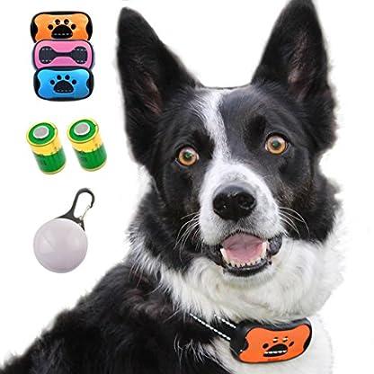 The Woof Whisperer Anti Bark Dog Collar Small Medium Large Dogs STOP BARKING No Shock Vibration Sound Training Collar… 1