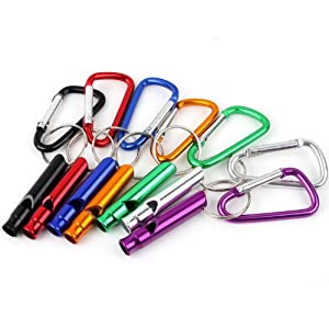 51T5%2BYSyjTL. SS300  - Generic 5Pcs Set Keyring Caribiners Snap On Clip Plus Whistle Keychain