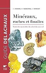 Minéraux, roches et fossiles. Toutes les merveilles du sol et du sous-sol de Arthur clive Bishop