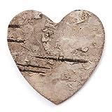 Anladia Corteza de Decoración de Hogar Material Natural Manualidad para Cafetería Restaurante (400, corazón 3cm)