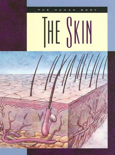 The Skin (The Human Body)
