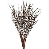 Jasmin Pflanze künstlich (12er-Pack) - 74cm langer realistischer Jasmin für Zuhause, Büro, Schlafzimmer, Küche oder Wohnzimmer - Weiße Kunstblumen - Kunst Blumen aus Jasmin- Künstliche Jasminblüten