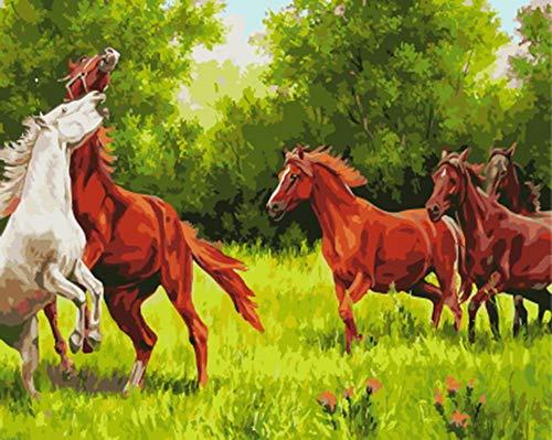 GCQBLM Malen nach Zahlen Malen nach Zahlen für Wohnkultur für Wohnzimmer Vier Pferde 16 x 20 Zoll Rahmenlos