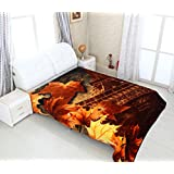 A Homes Grace Super Soft, Warm & Cozy, Reversible, Brown Magnificently Printed Double Bed Mink Blanket
