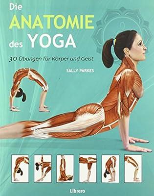 Die Anatomie des Yoga