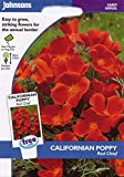 johnsons seeds - Pictorial Pack - Fiore - Papavero della California Rosso Chief - 300 Semi