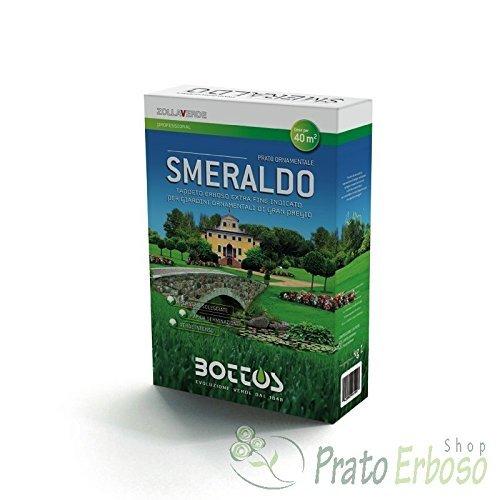 Sementi Smeraldo - 1 Kg