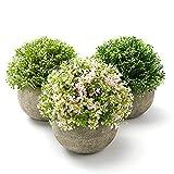 Homealexa 3PCS Plantes Artificielles en Plastique Fausse Fleur en Pot Décoration pour Mariage Extérieur Maison Bureau Jardin Chambre, Cadeau pour Amis Familles
