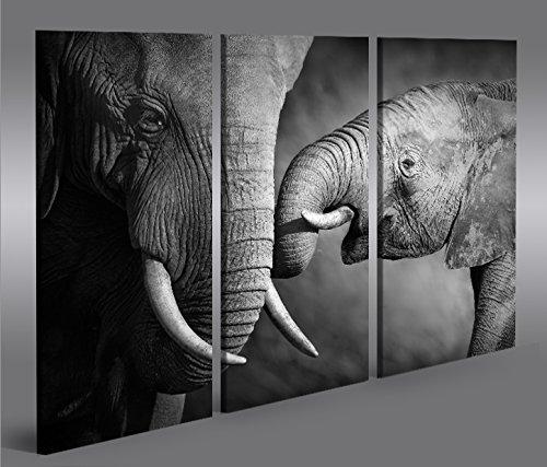 Cuadro en Lienzo Elefanten V2 3p Elefantenbaby Impresión sobre lienzo - Formato...