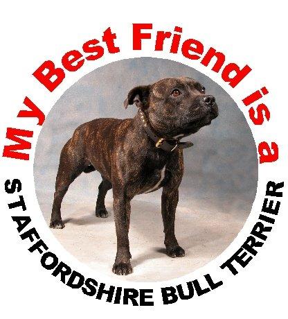 2 Staffordshire Bull Terrier/Staffie Car Stickers My Best Friend No.