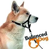 Balanced Dog Erziehungsgeschirr SCHWARZ - L | Halti | Halfter