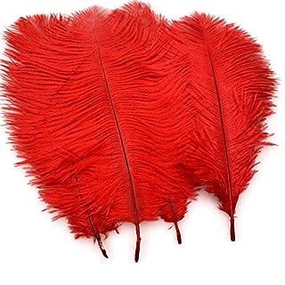 Sowder Lot de 20 plumes d'autruchenaturels 25–30cm, Plumes pour table de mariage, décoration de la maison