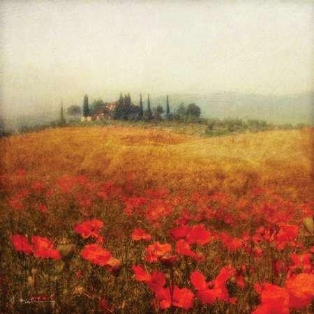 impresion-de-arte-fino-en-lienzo-tuscan-poppies-by-melious-amy-pequena-49-x-49-cms