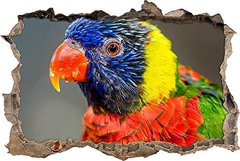 Pixxprint 3D_WD_S1895_62x42 exotischer bunter Papagei Wanddurchbruch 3D Wandtattoo, Vinyl, bunt, 62 x 42 x 0,02