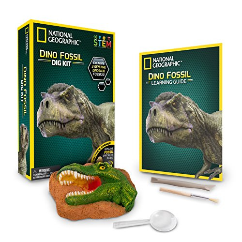 National Geographic 80474 Dinosaurier Dig Kit
