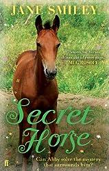 Secret Horse