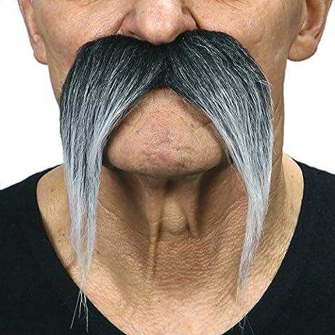 Kung-fu master salt and pepper moustache