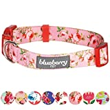 Blueberry Pet Hundehalsband, 8 Muster, Frühlingsduft, inspiriert von Blumenrosen, Babyrosa, Größe S, Halsumfang 30,5-40,6 cm, Verstellbare Halsbänder für Hunde