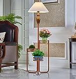 JAZS® American Stehleuchte Wohnzimmer Schlafzimmer Creative Couchtisch Stehleuchte Continental Modern Ohne Lichtquelle Kreativität Persönlichkeit Einfachheit Mode ( Farbe : #1 )